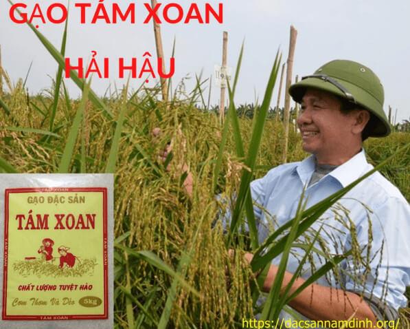 Đặc sản gạo tám thơm và gạo tám xoan Hải Hậu không nên bỏ lỡ